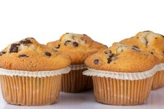 Several muffin isolated on a white background Stock Photos