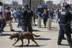 Several NYPD Counter-terrorism bureau officers during opening da. BRONX, NEW YORK, USA - APRIL 10:  NYPD Counter-terrorism Bureau K-9 officers during opening day Stock Image