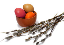 Several osier of willow and Easter eggs Stock Images