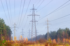 Several overhead power lines among autumnal forest Royalty Free Stock Image