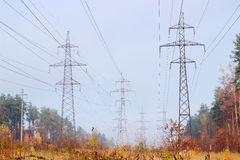 Several overhead power lines among autumnal forest Royalty Free Stock Images