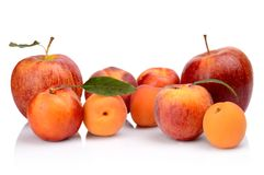 Several peaches,apricots,nectarines and apples isolated on white Stock Images