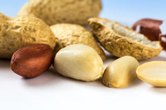Several peanuts. Shelled and without shell Stock Image