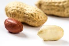 Several peanuts Royalty Free Stock Image