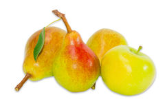 Several pear Bartlett and apple on a light background. Several ripe pear Bartlett and one yellow apple on a light background. Isolation Stock Images