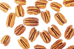 Several pecan nuts Stock Photos
