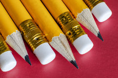 Several pencils with erasers. On a red background Royalty Free Stock Images