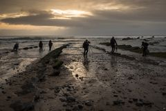 Several photographers `fish` photos on the rocky beach at sunset stock photos