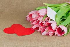 Several pink tulips with little postcard and two red hearts Stock Images