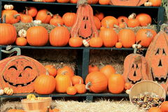 Several pumpkins tucked on straw-covered shelves. Several big, orange pumpkins tucked together on bed of straw-covered shelves, with expressive faces of wooden Royalty Free Stock Photo