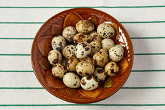 Several quail eggs lie in a ceramic plate Royalty Free Stock Image