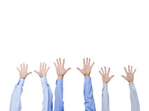 Several raising human hands Stock Images