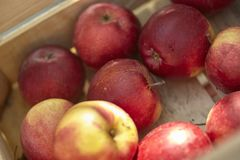 Several red apples. Gathered in a box at the market stock photos
