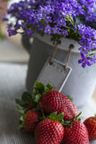 Several red fresh strawberries are on the wood with campanula. As background Royalty Free Stock Photos