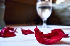 Several red petals displayed on a white linen table with a glass filled with water in the back at a restaurant in Hawaii stock images