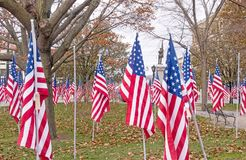 American national flags in historic  Park Square park Royalty Free Stock Photography