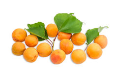 Several ripe apricot and a branch with leaves closeup Royalty Free Stock Photography