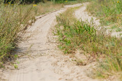Several rural countryside dirty roads Stock Photography