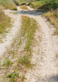 Several rural countryside dirty roads Royalty Free Stock Photo