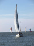 Several Sailboats on the bay under sail Royalty Free Stock Photo