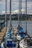Sailboats moored by the pier in White Rock, BC stock image
