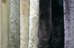 Several samples of artificial fur Stock Photo