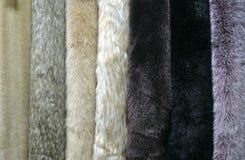 Several samples of artificial fur. Several beautiful samples of artificial fur stock photo