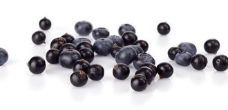 Several scattered blueberries  on white Stock Photos