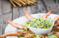 Several shrimps on plate served with greenery Royalty Free Stock Photos