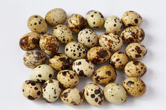 Several small quail eggs lie on a white background Stock Photo