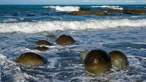 Spherical boulders on Ward Beach, New Zealand royalty free stock images