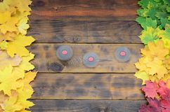 Several spinners among the many yellowing fallen autumn leaves on the background surface of natural wooden boards of dark brown c Stock Image