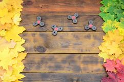 Several spinners among the many yellowing fallen autumn leaves on the background surface of natural wooden boards of dark brown c. Olor stock images