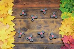 Several spinners among the many yellowing fallen autumn leaves on the background surface of natural wooden boards of dark brown c Royalty Free Stock Photography