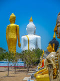 Several statues of Buddha posture. Big white Buddha statue in front of Royalty Free Stock Images
