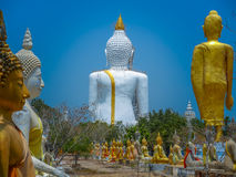 Several statues of Buddha posture. Big white Buddha statue in front of Stock Photos