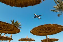 Several straw beach umbrellas and a airplane royalty free stock photography