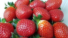 Strawberries in macro view. Several strawberries in macro view royalty free stock photography