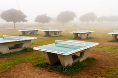 Several table tennis in the fog. With some trees in the background Royalty Free Stock Photos