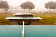 Several table tennis in the fog. With some trees in the background Royalty Free Stock Photo