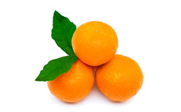 Several tangerine Royalty Free Stock Photos