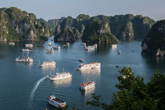 Several Tourist Boats on Bay Stock Photography