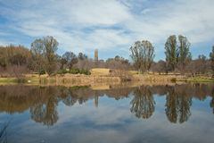 SEVERAL TREES REFLECTING IN POND DURING WINTER SEASON. Tall trees in park reflecting in pond Royalty Free Stock Image