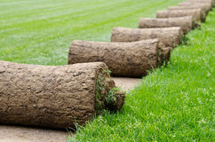 Grass rolls Royalty Free Stock Photos