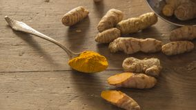 Turmeric roots on wooden surface. Several turmeric roots and a spoon with turmeric powder on a wooden surface Stock Image