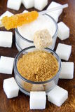 Several types of sugar - refined sugar Stock Images