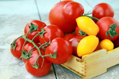 Several varieties of tomatoes in a box Royalty Free Stock Image