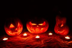 Several very scary Halloween pumpkins, with a menacing gaze and stock photo