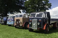 Several vintage Trucks on show at a village fete stock images