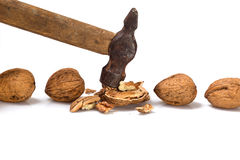 Several walnuts and hammer. Royalty Free Stock Image